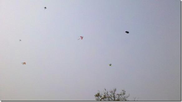 在天空翱翔的风筝
